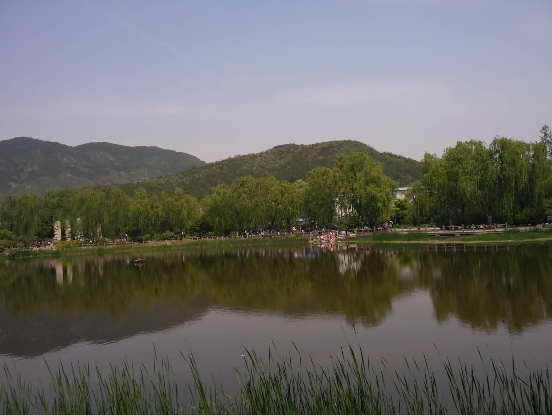 平静的水面令人心静